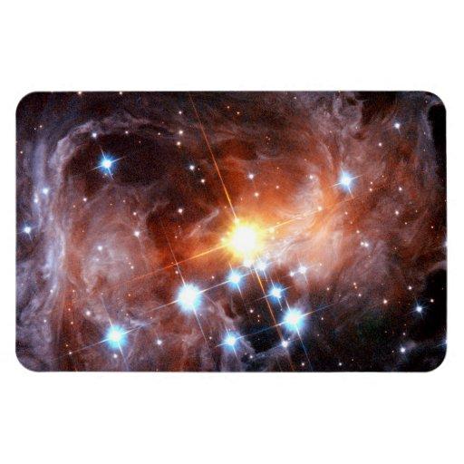 V838 Monocerotis Flexible Magnets