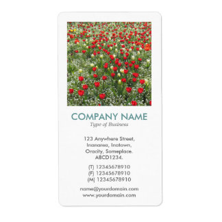 V Square Photo - Bed of Tulips Shipping Label