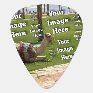 Vacation Image Template Plectrum