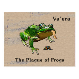 Va'era - Frogs Postcard