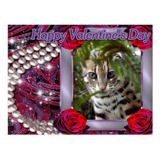 val-bengal-cat-00073-6x4 postcard