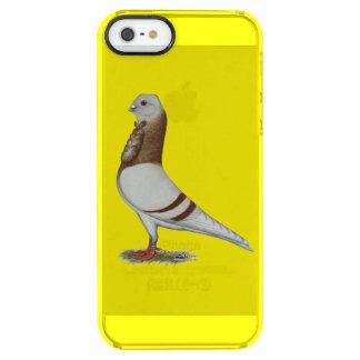 Valencian Figurita Pigeon Clear iPhone SE/5/5s Case