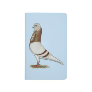 Valencian Figurita Pigeon Journal