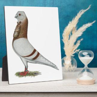 Valencian Figurita Pigeon Plaque