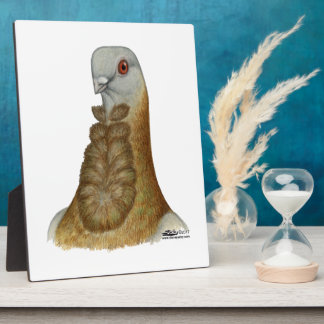 Valencian Figurita Pigeon Portrait Plaque