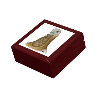 Valencian Figurita Pigeon Portrait Small Square Gift Box