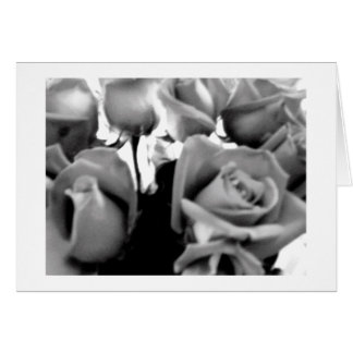 Valentine Black and White Roses Card