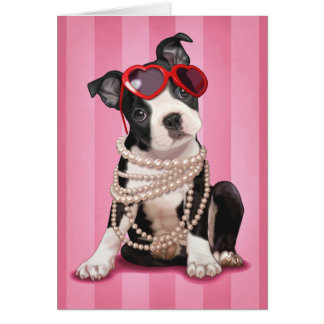Valentine Boston Terrier Card
