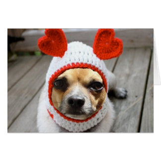 Valentine Chihuahua Greeting Card