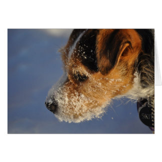 Valentine form the Dog Card
