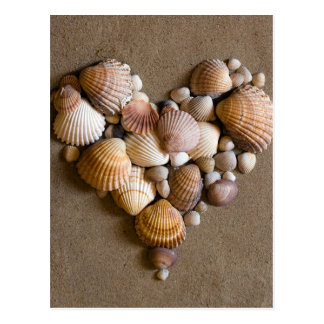 Valentine Heart Made with Shells Postcard