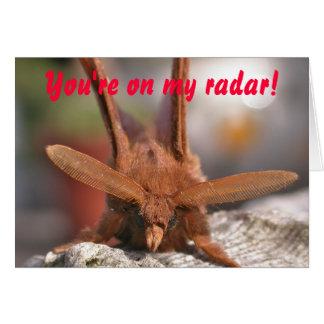 Valentine Moth Antennae: You're on my radar! Card