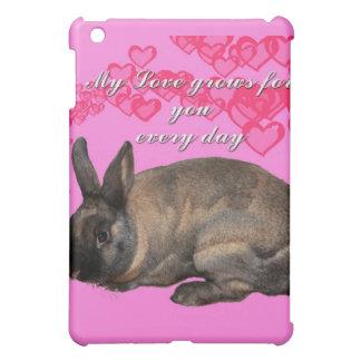 Valentine, my love grows for you daily bunny rabbi iPad mini cover