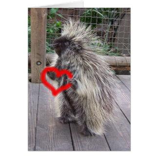 Valentine Porcupine Card