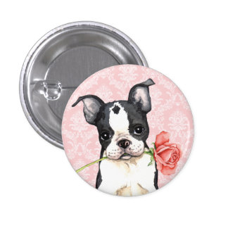 Valentine Rose Boston Terrier Buttons