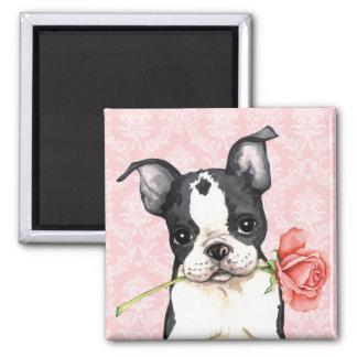 Valentine Rose Boston Terrier Magnet