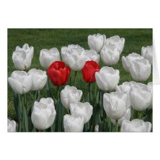 Valentine Tulips Card