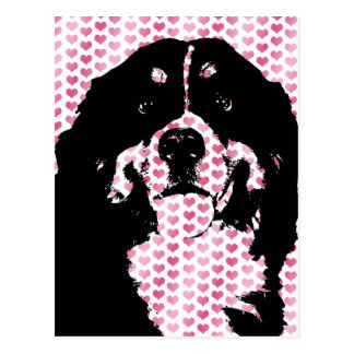 Valentines - Bernese Mountain Dog Silhouette Postcard