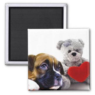 Valentine's boxer puppy magnet
