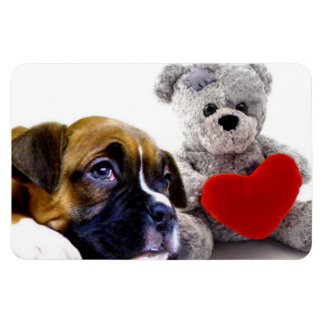 Valentine's boxer puppy rectangular photo magnet