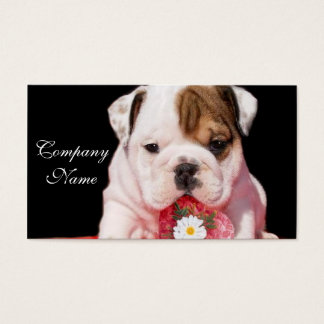 Valentine's bulldog puppy business cards