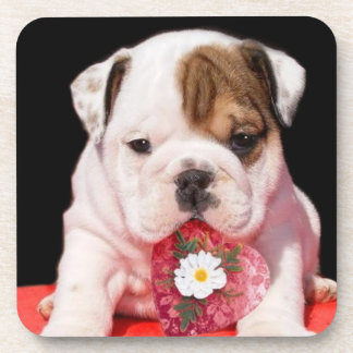 Valentine's bulldog puppy coaster