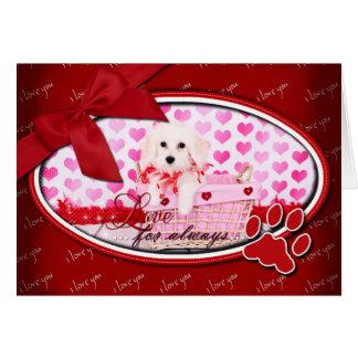 Valentines - Coton de Tulear - Sophie Card