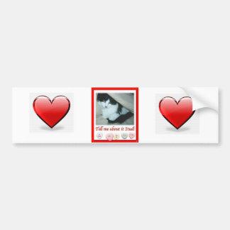Valentine's Day Black and White Cat Bumper Sticker