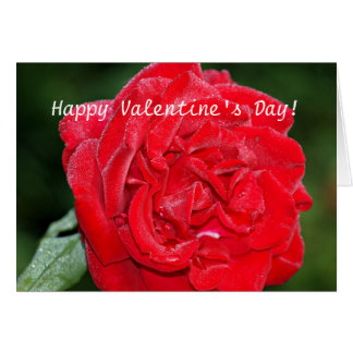 Valentine's Day Card with Red Rose