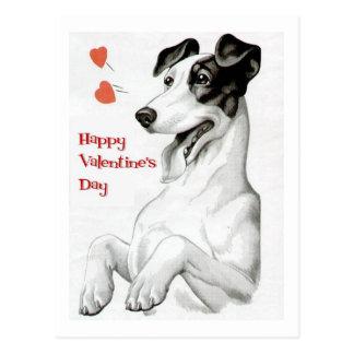Valentines Day Dog Postcard