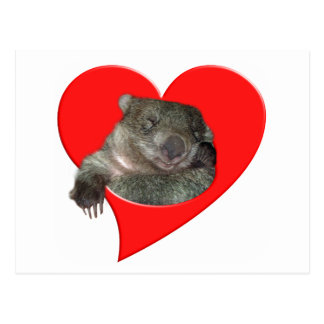 Valentine's Day Gifts, Wombat Love! Post Card