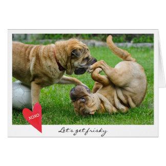 Valentine's Day Let's Get Frisky Dog Photo Card
