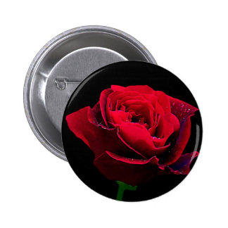 Valentines Day Red Rose Pinback Buttons