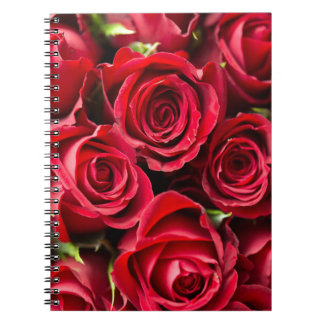 Valentine's Day Red Roses Spiral Notebook