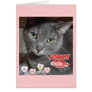 Valentine's Day Russian Blue Gray Cat Card