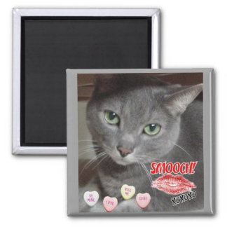 Valentine's Day Russian Blue Gray Cat Magnet