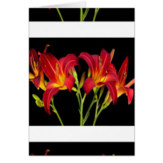 Valentine's Exotic Flower Romance Sensual Gifts Card
