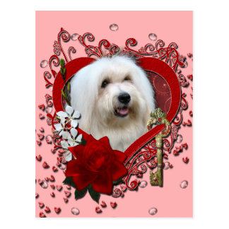 Valentines - Key to My Heart - Coton de Tulear Postcard
