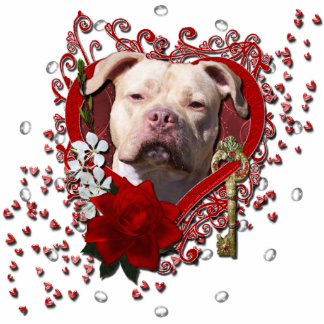 Valentines - Key to My Heart - Pitbull Jersey Girl Standing Photo Sculpture