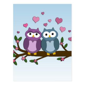 Valentines owls postcard