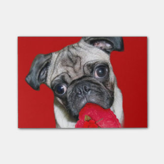 Valentine's pug dog post-it® notes