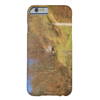 Valle Crucis Cell Phone and Ipad case