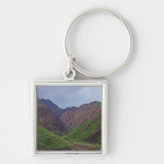 Valley At Denali's Toklat River Silver-Colored Square Key Ring