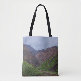 Valley At Denali's Toklat River Tote Bag