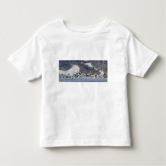 valley of joux and lake toddler T-Shirt