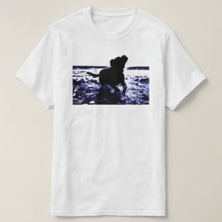 Value t-shirt black lab playing in water