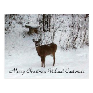 Valued Customer Merry Christmas Deer Postcard
