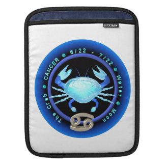 Valxart 1962 2022 WaterTiger zodiac Cancer Sleeves For iPads
