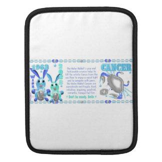 Valxart 1963 2023 WaterRabbit zodiac Cancer Sleeve For iPads