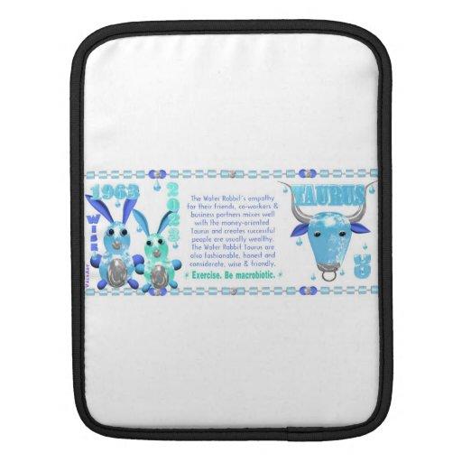 Valxart 1963 2023 WaterRabbit zodiac Libra iPad Sleeves